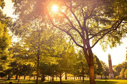 27. University of Alabama School of Law – Tuscaloosa, Alabama